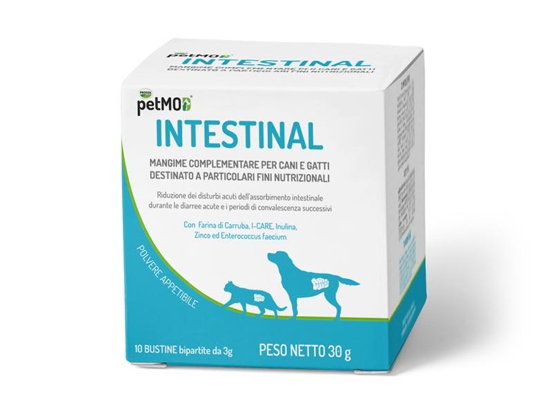 petMOD® INTESTINAL /INTESTINAL XL - Pet Nutrition - Gut Health
