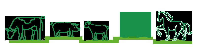 Biosprint varie specie