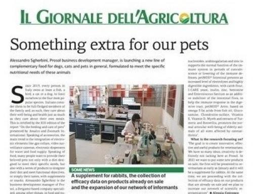 Prosol Interview: Focus on Petfood market