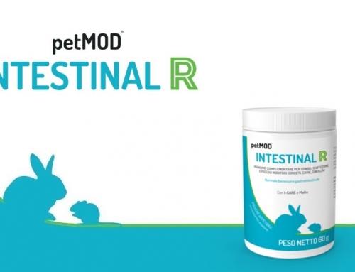 Prosol lancia in anteprima al DigitalVetExpo il nuovo petMOD® INTESTINAL R