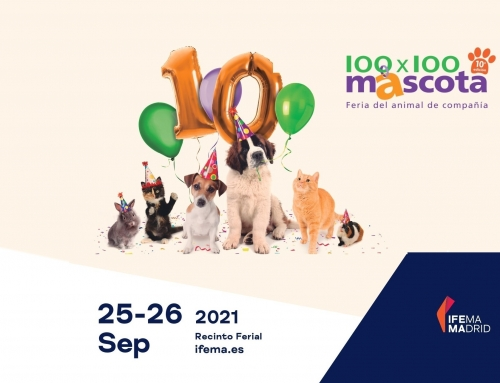 PetMOD® at 100×100 Mascota